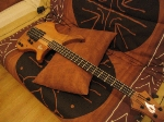 Vigier passion 4c custom